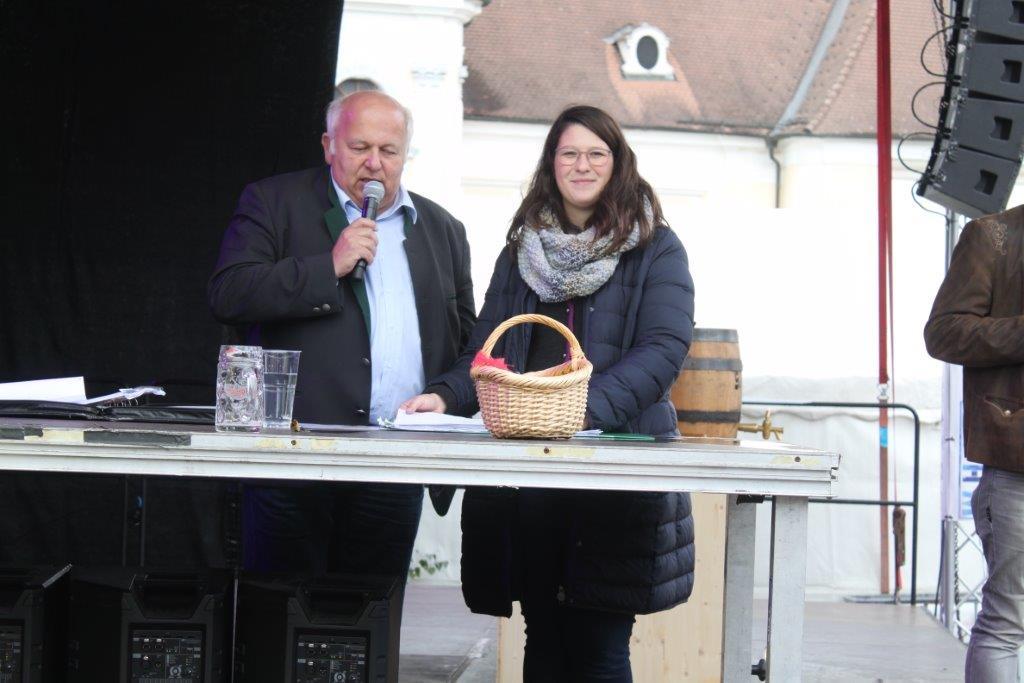 Oldtimerumzug-2019-c-ARGE-Erdäpfelfest-Geras-73