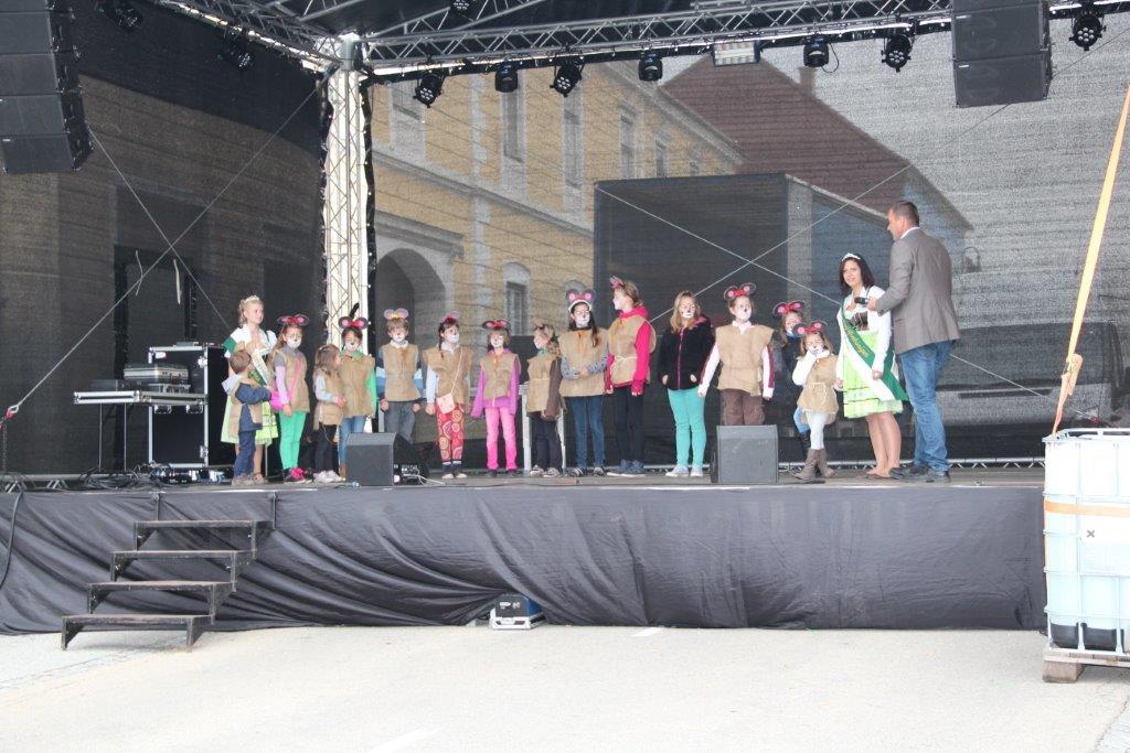 Erdaepfelfest 2015 (c) Silberbauer (81)
