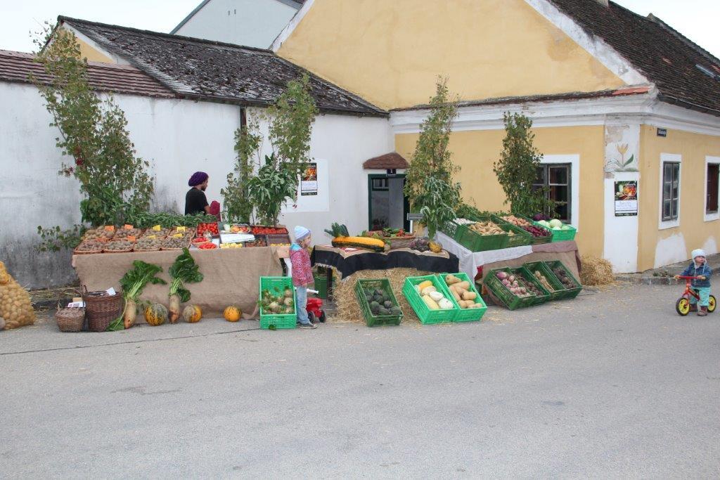 Erdaepfelfest 2015 (c) Silberbauer (90)