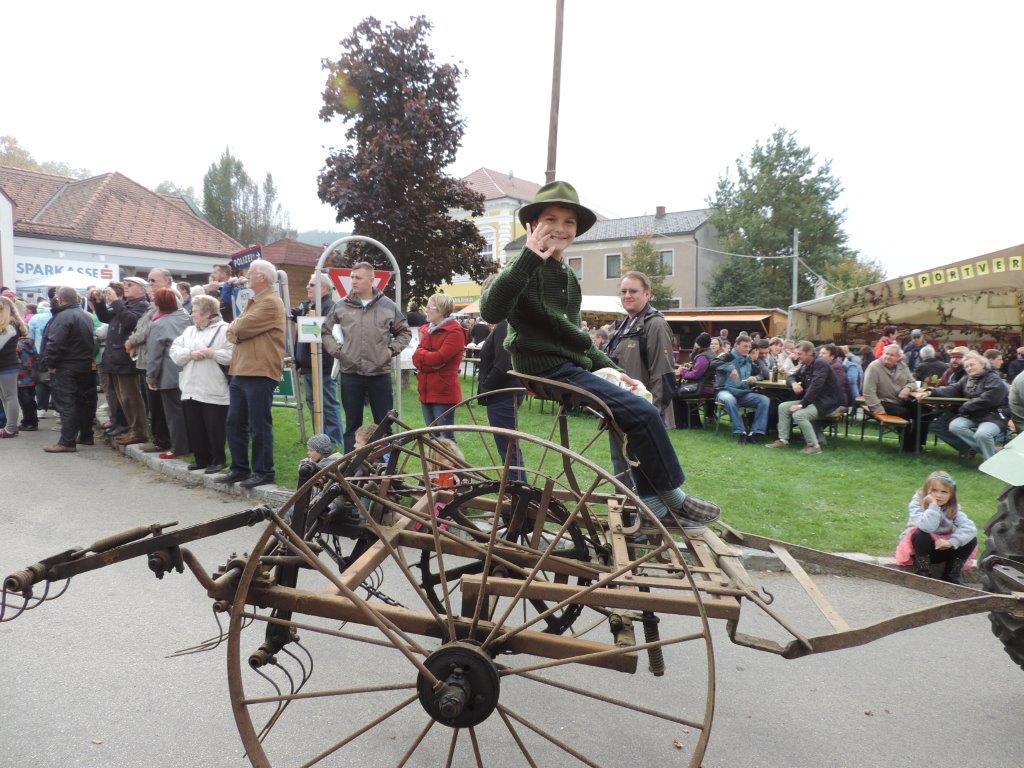 Erdaepfelfest Geras 2014 (c) Margit (53)