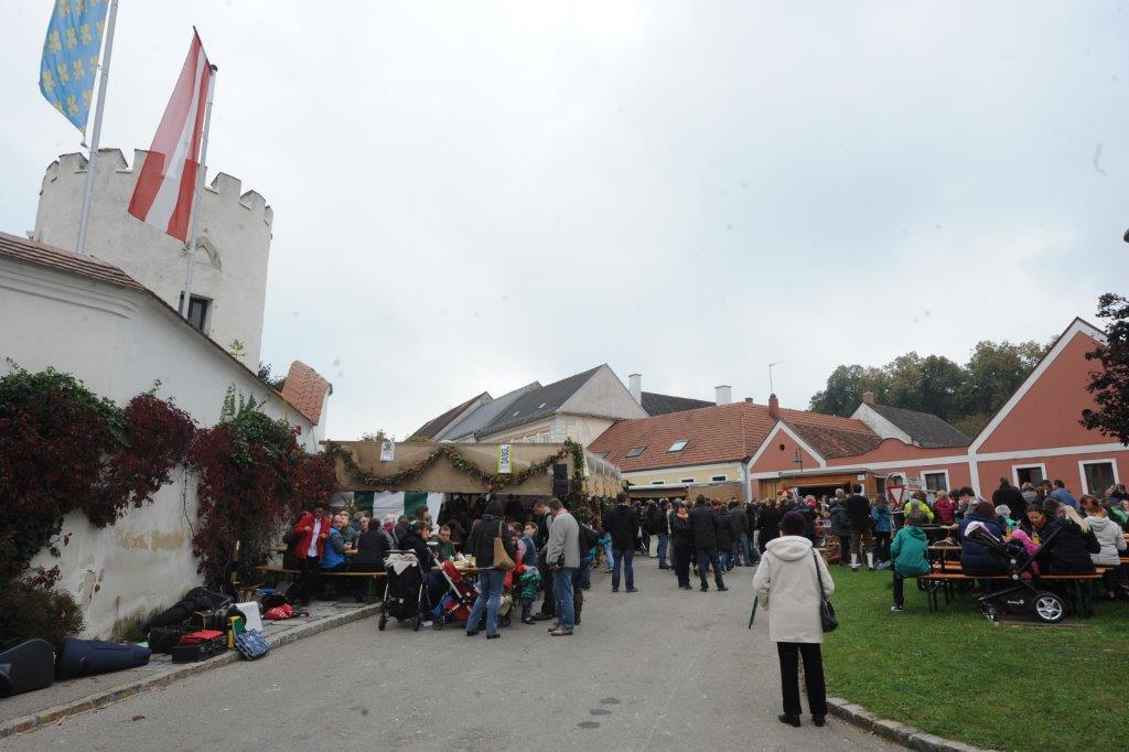 Erdaepfelfest Geras 2014 (c) Viktor Kabelka (14)