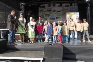 Erdaepfelfest Geras 2015 (c) ARGE Erdaepfelfest (2)